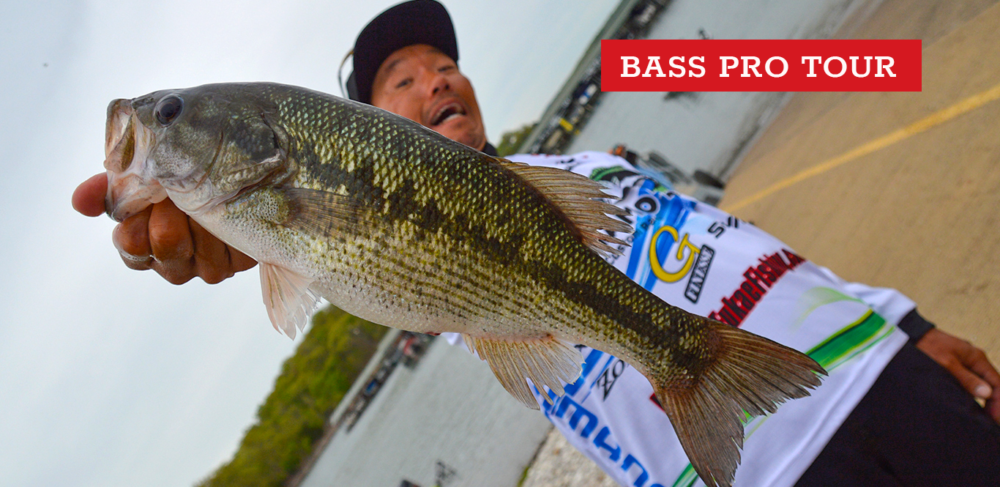 Image for Shin Fukae: Coming to America, and the MLF Bass Pro Tour