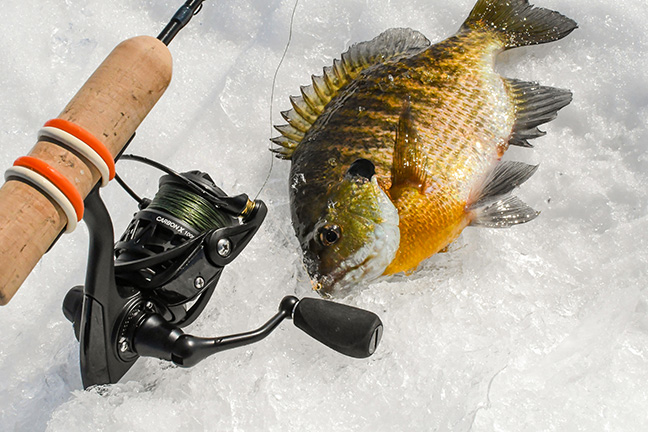 Fishing Rod Series Croix Custom Ice Choose Model CI St