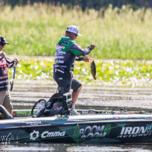 Fred Roumbanis boat flips a healthy bass. Photo by Jesse Schultz