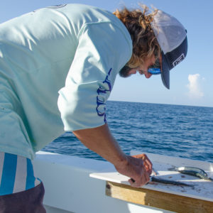 Dallas, one of the Hawks Cay fishing guides, cut up bait for offshore fishing. Photo by Rachel Dubrovin.
