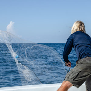 Captain Dave threw out a net to catch bait fish. Photo by Rachel Dubrovin.