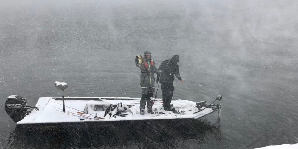 Image for Snowy Bass Survival Guide with David Walker and Brent Chapman