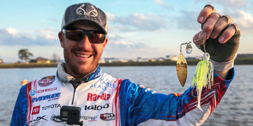 Image for Wheeler's 'Ol' Big' Spinnerbait Carried Him to Eufaula Win
