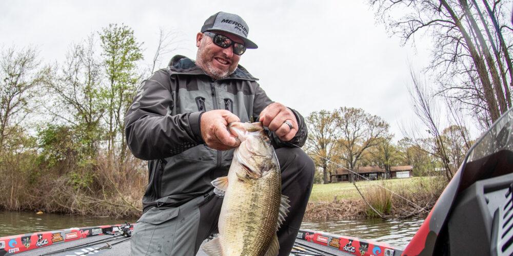 Image for Why a Senko is Brett Hite's Go-To Bait for Finicky Spring Bass