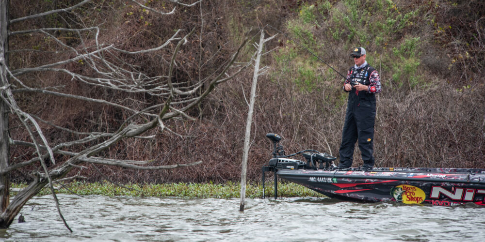 Image for KEVIN VANDAM: Cut by a Fork at Stage Three