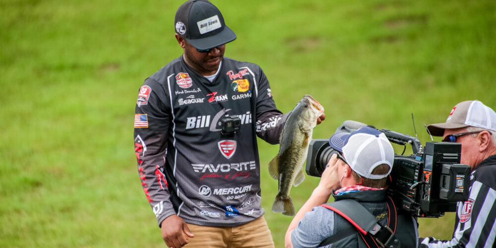 """Image for Mark Daniels, Jr. Adds """"Alabama Shake"""" to his Swim Jig Repertoire (And so Should You)"""