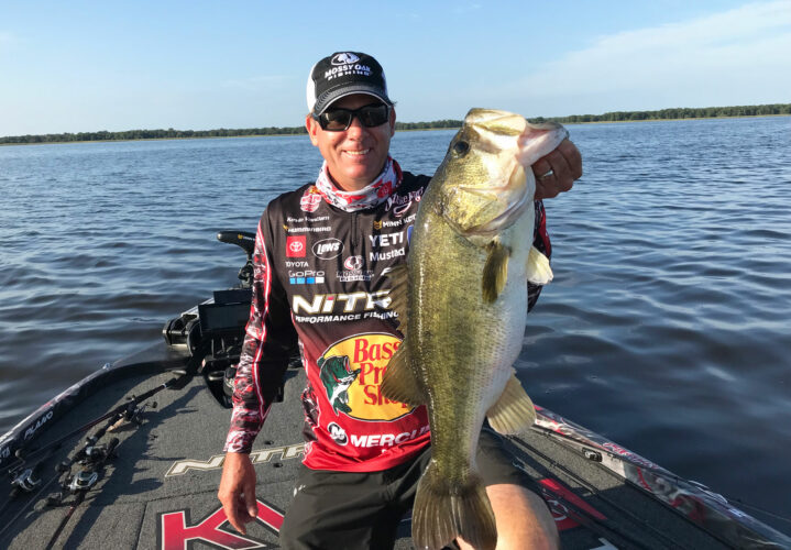 Image for GALLERY: Big Bass of Heavy Hitters