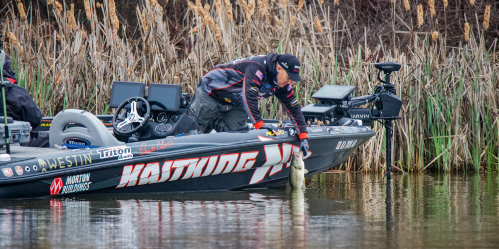 Image for Prespawn Preparation Can't Start Soon Enough for Brent Chapman