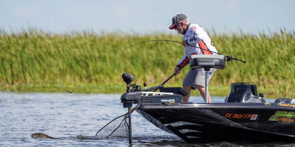 Image for Top 5 Patterns from Lake Okeechobee – Day 2