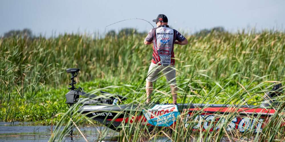 Image for Top 5 Patterns from Lake Okeechobee – Day 3