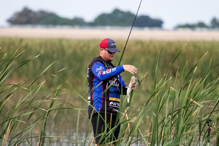 Image for GALLERY: Tackle Warehouse Pro Circuit, Lake Okeechobee, Day 4 Morning