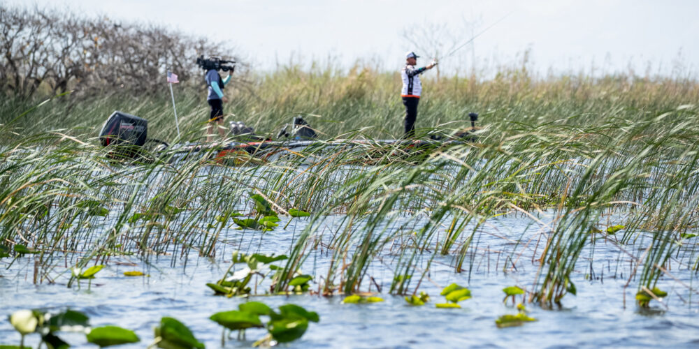 Image for Top 10 Patterns from Lake Okeechobee