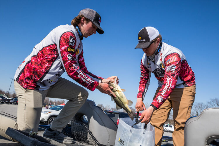 Image for GALLERY: Abu Garcia College Fishing National Championship, Day 2 Weigh-In