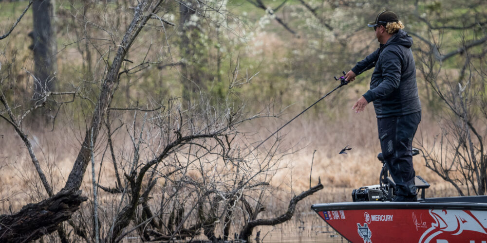 Image for Top 5 Patterns from Smith Lake – Day 1