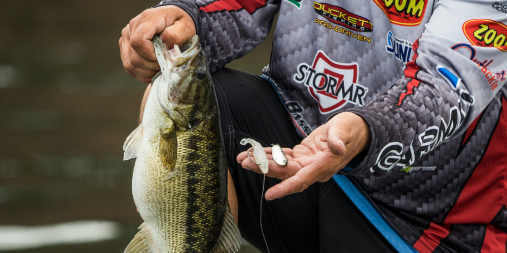 Image for Top 10 Baits from Smith Lake