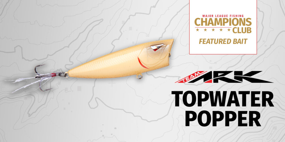 Image for Featured Bait: Team Ark Topwater Popper