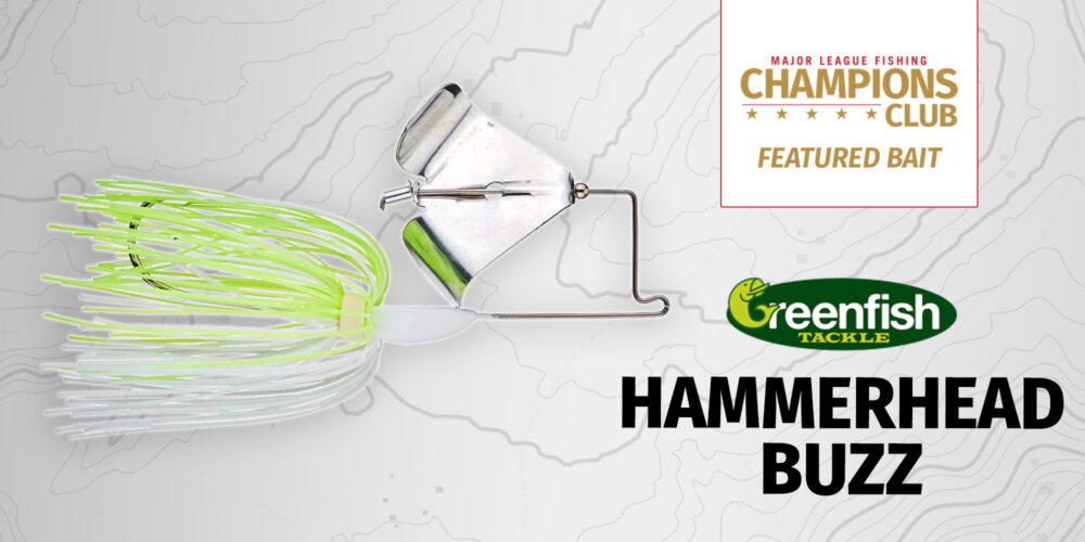 Image for Featured Bait: Greenfish Tackle Hammerhead Buzz