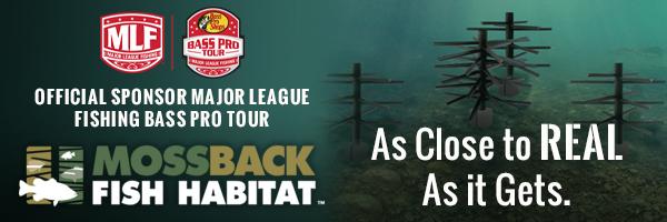 Image for MossBack Fish Habitat and Major League Fishing Team Up for North Carolina Habitat Restoration Event at Lake Mackintosh