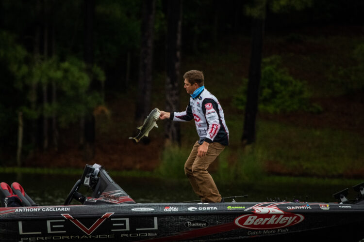 Image for GALLERY: Tackle Warehouse Pro Circuit, Lake Murray, Day 4 OTW