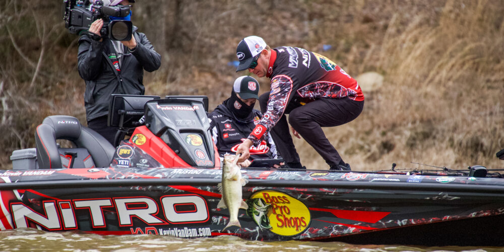 Image for KEVIN VANDAM: They Don't All Spawn at Once!
