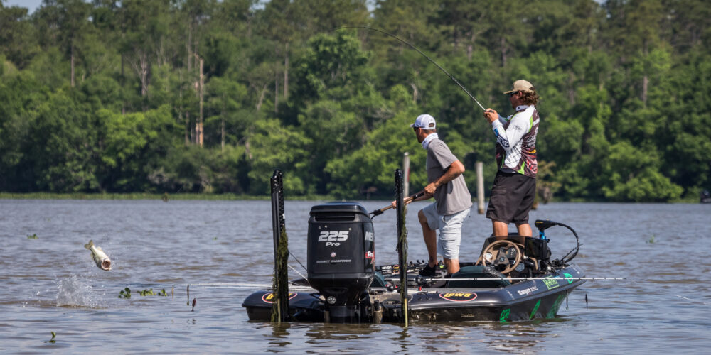 Image for Top 5 Patterns from Lake Seminole – Day 2