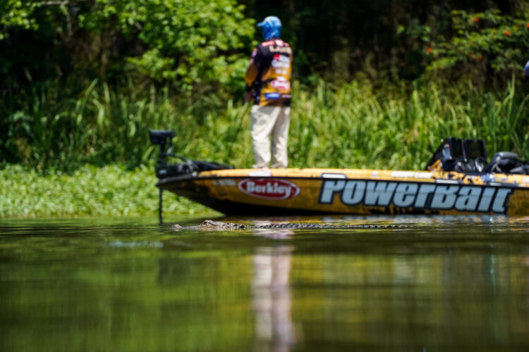 Image for GALLERY: Tackle Warehouse Pro Circuit, Lake Eufaula, Day 3 Afternoon