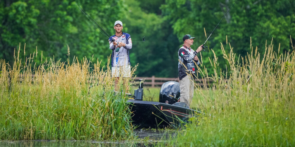 Image for Top 5 Patterns from Douglas Lake – Day 2