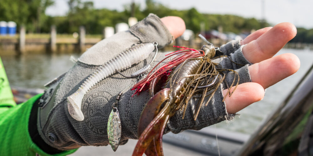 Image for Top 10 Baits from the Potomac River