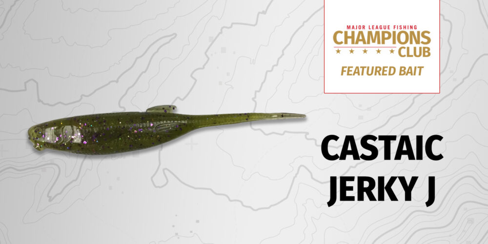 Image for Featured Bait: Castaic Jerky J (8-pack)
