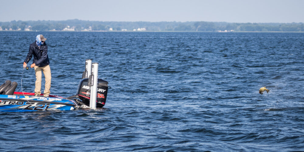 Image for Top 5 Patterns from Lake Champlain – Day 1