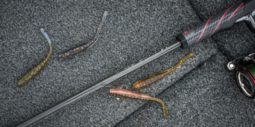 Image for Top 10 Baits from Lake Champlain