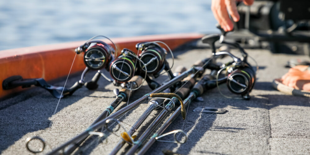 Image for Top 10 Baits from the St. Lawrence