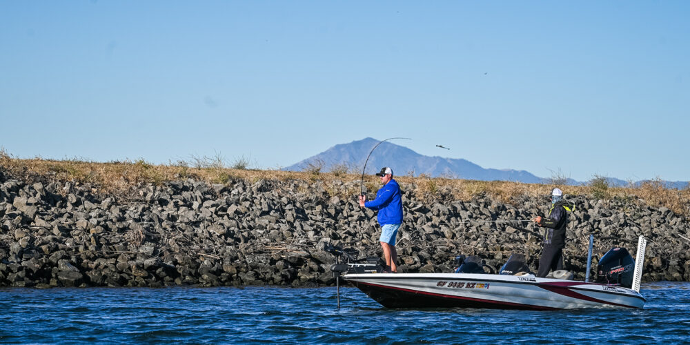 Image for Top 5 Patterns from the California Delta – Day 2