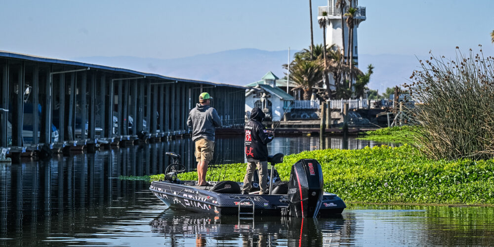 Image for Top 10 Patterns from the California Delta