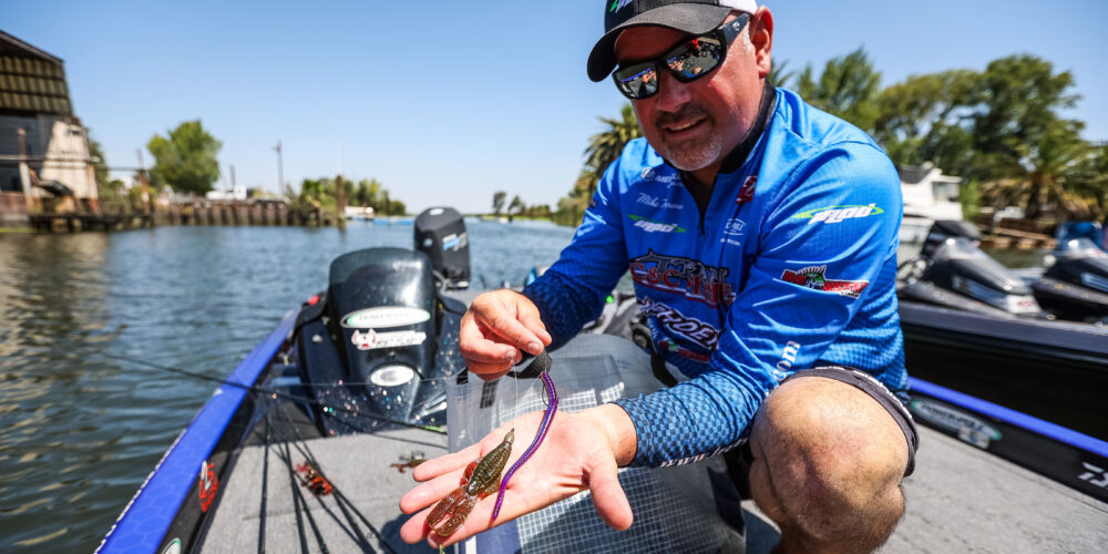 Image for Top 10 Baits from the California Delta