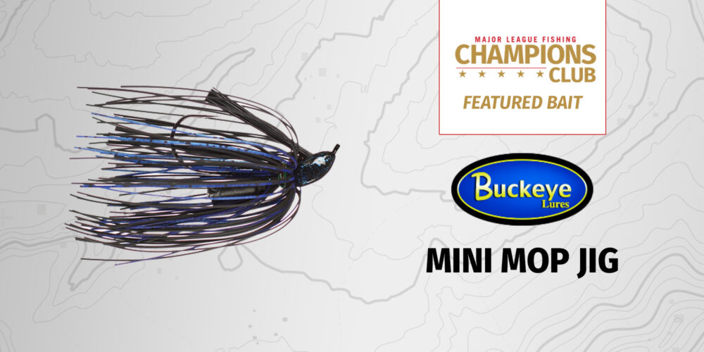 Image for Featured Bait: Buckeye Lures Mini Mop Jig