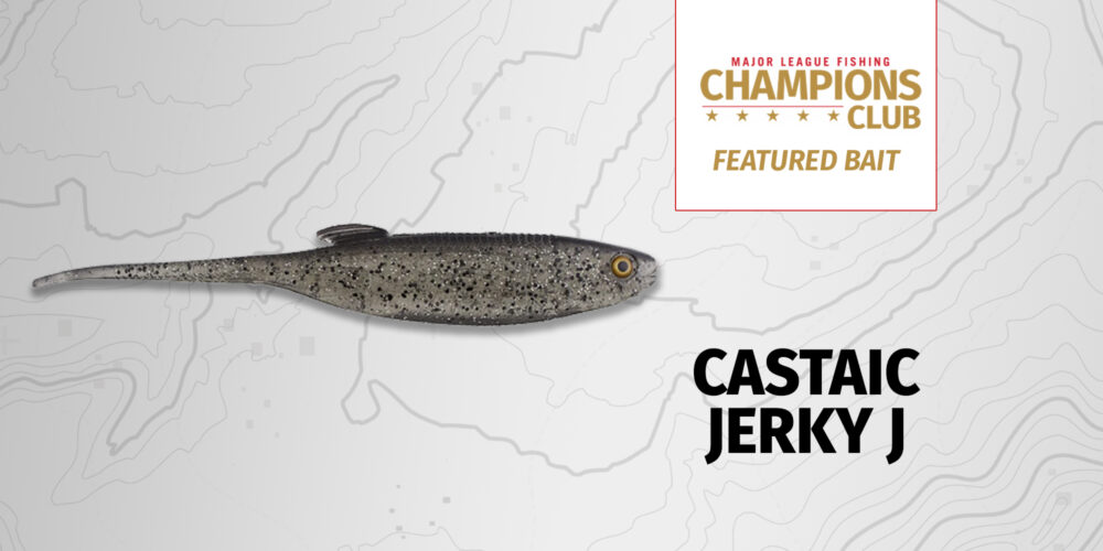 Image for Featured Bait: Castaic Jerky J