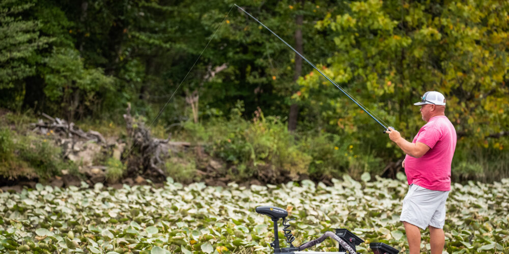 Image for Top 5 Patterns from the Potomac River – Day 1