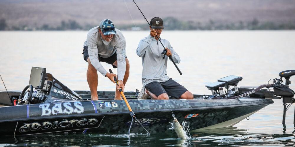 Image for Lake Havasu Midday Update – Day 2