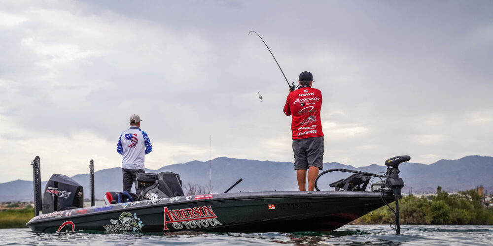 Image for Top 10 Patterns from Lake Havasu