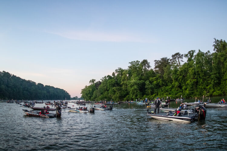 Image for MLF Announces Fort Loudoun and Tellico Lakes as Venue for 2021 Phoenix Bass Fishing League Wild Card Tournament