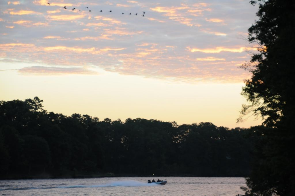 Image for Lake Chickamauga to host Walmart BFL Regional Championship
