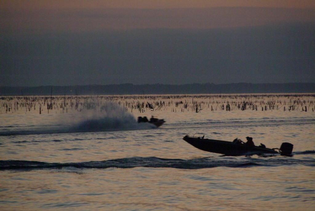 Image for National Guard FLW College Fishing Southern Conference marches to Toledo Bend