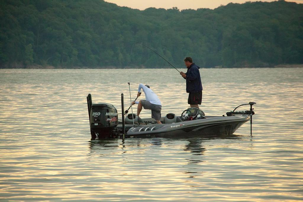 Image for Top 3 Patterns – Kentucky Lake Regional