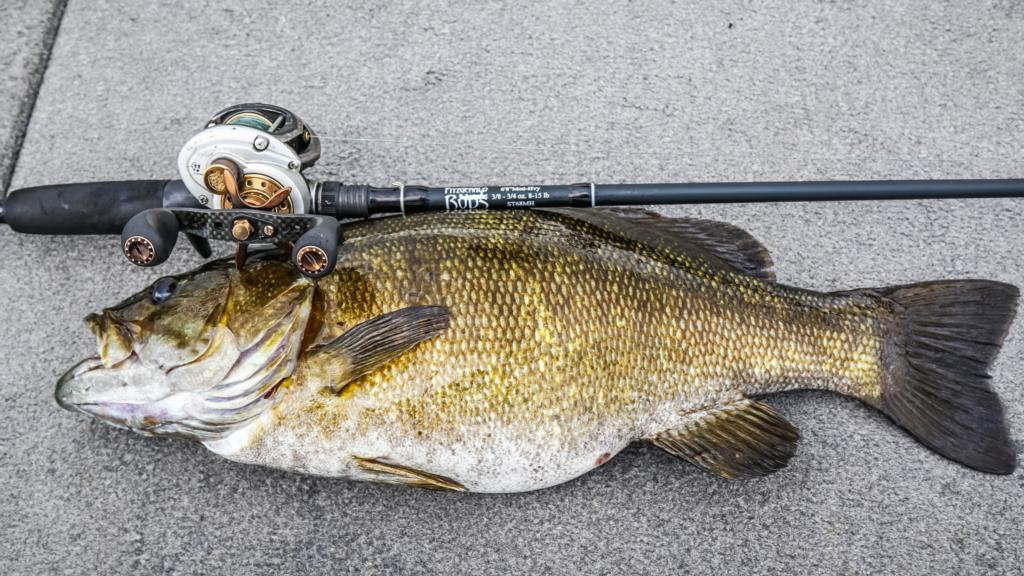 Image for How to Catch Big Fall Smallmouths