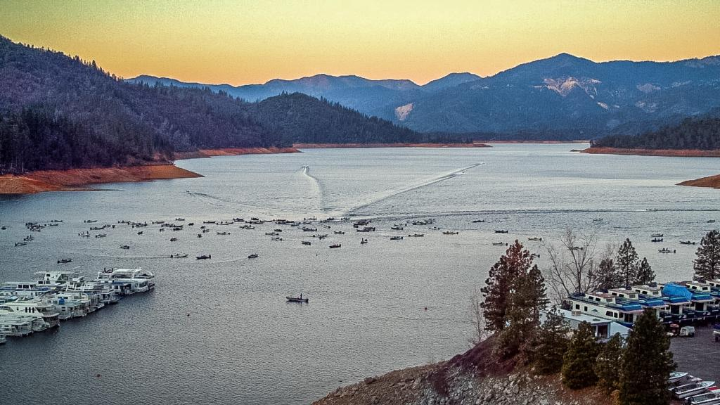 Image for Shasta on the Rise