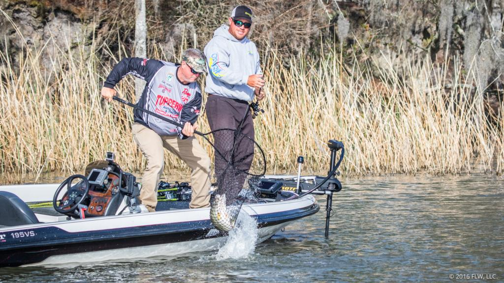 Image for Top 10 Patterns from Santee Cooper