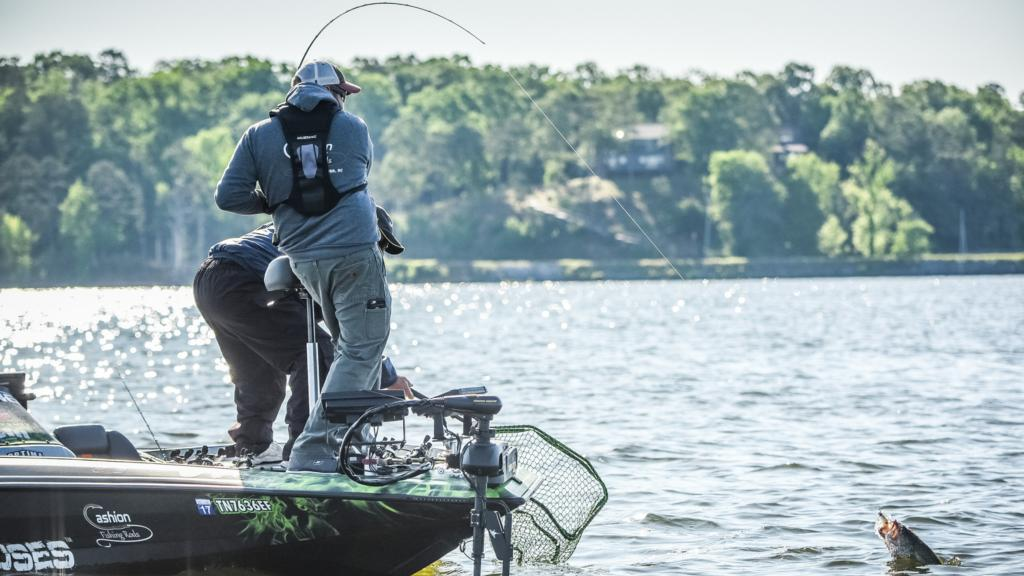 Image for Pickwick Lake Top 5 Patterns Day 1