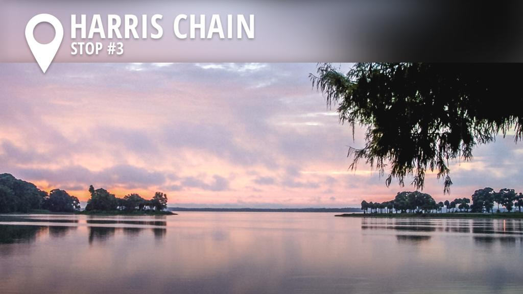 Image for 2017 Harris Chain Preview