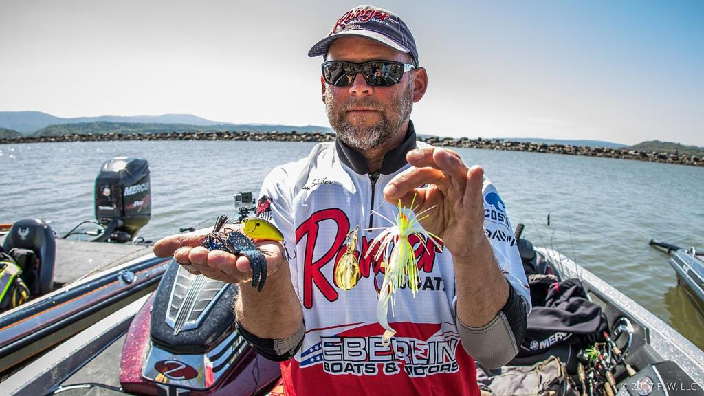 Image for Top 10 Baits from Lake Dardanelle